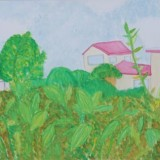 「学校の周りの景色」佳作 虫狩 光桜下士幌小学校