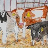 佳作「牛となかよし」東士幌小学校 2年山本義貴